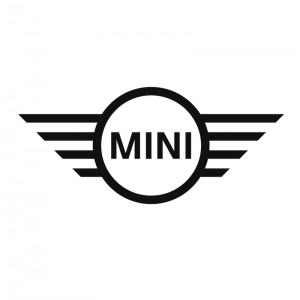 Reprogrammation moteur Mini