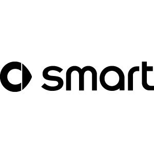 Reprogrammation moteur Smart